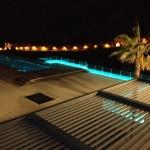 Chamaeleon_Mallorca_2